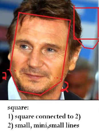 Image result for Liam Neeson face shapes 101