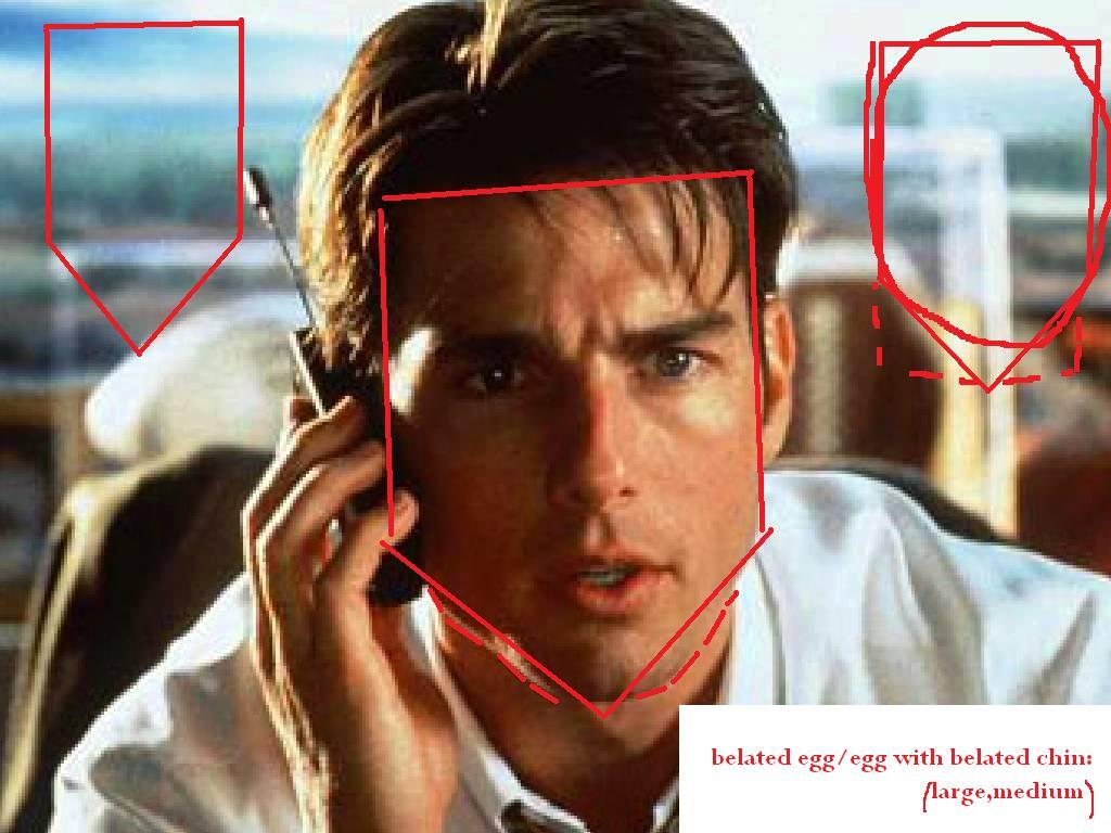 Tom cruise face shape