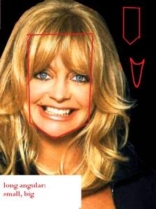 Goldie Hawn long angular