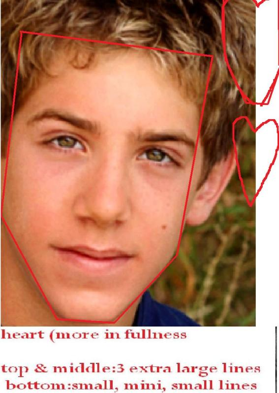 Shane Haboucha Heart more in fullness   face shapes 101  Shane Haboucha ...