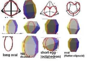 1 round shapes