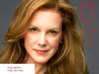 Elizabeth Perkins long angular