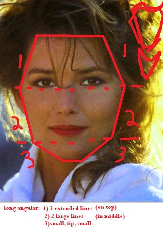 Shania Twain Long Angular Face Shapes 101