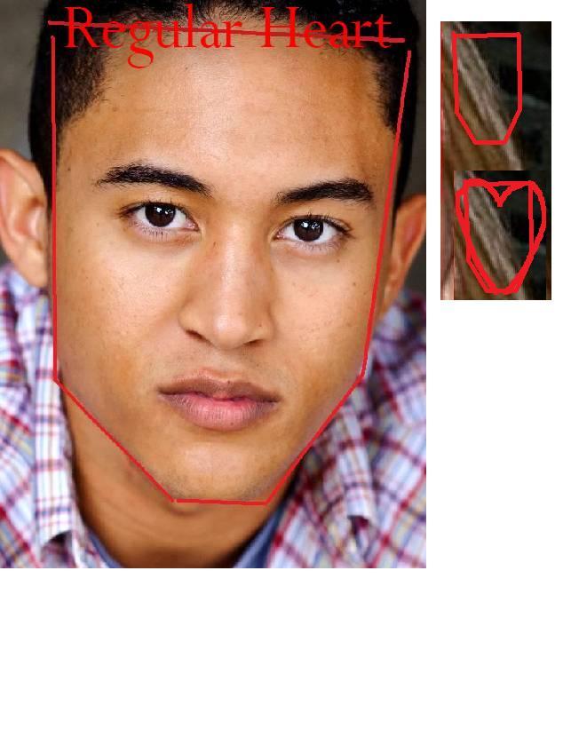 keh1016   face shapes ...