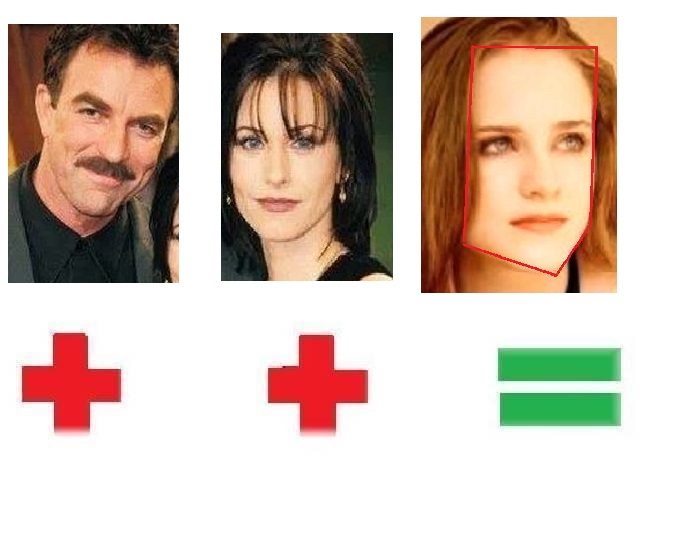 Tom Selleck & Courtney Cox=Evan Rachel Wood | face shapes 101
