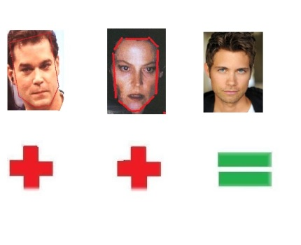 ray liotta amp sigourney weaverandrew seeley face shapes 101
